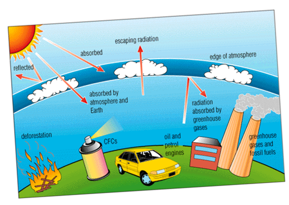 ozone layer graphic